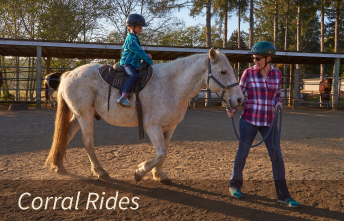 Horseback Corral Rides for Children