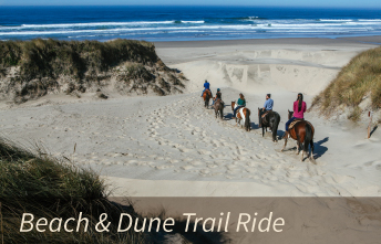 Horseback Beach & Dune Trail Rides on the Oregon Coast