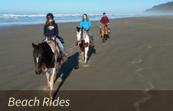 Horseback Beach Rides on the Oregon Coast