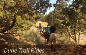 Horseback Dune Trail Rides on the Oregon Coast